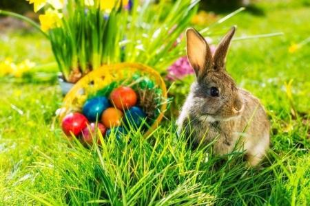 Wielkanocne życzenie
